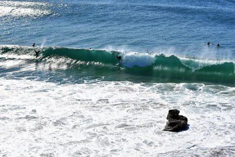 surf in Brasile